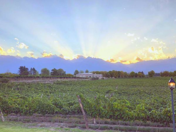 A picturesque scenery with the Claroscuro Bodega de Arte along the horizon and vineyards in the foreground, as the sun sets behind the clouds projecting strong rays through the sky.