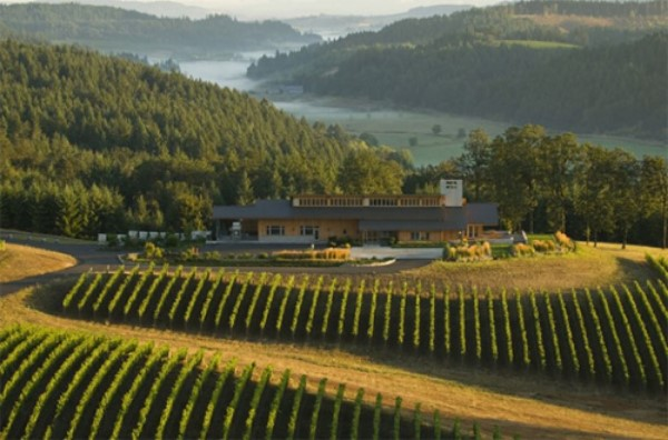 Aerial view of the Pearce Predhomme Winery and vineyards, set in front of a valley stream between rolling green hills.