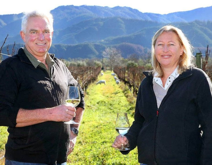 A photo of Mike and Claire Allan, owners of the Huia Winery where Hunky Dory is produced. They are standing in the Huia vineyards brandishing glasses of white wine, with rolling grass-covered hills in the distance, and lambs grazing along the vineyard.